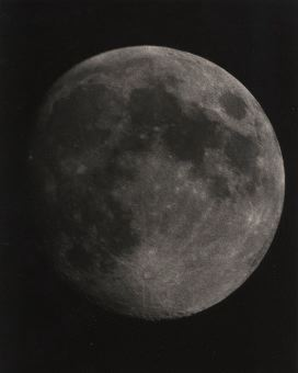 12 day moon