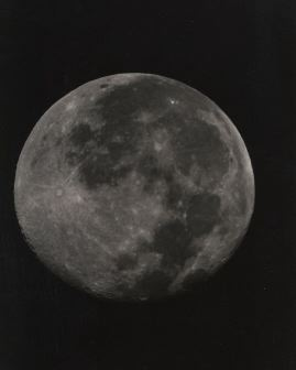 14 day moon
