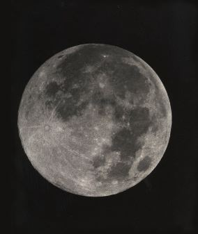 15 day moon