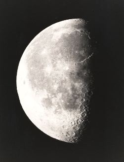 21 day moon